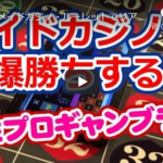 【ツールで爆勝ち女性プロギャンブラー】ルーレット~秋葉原メイドカジノ編~